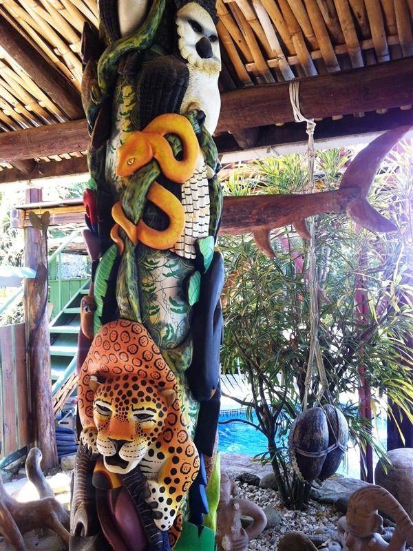 Details about  /Toucan Gift Mug Nature Bird Brazil Costa Rica Tropical Animal Eco